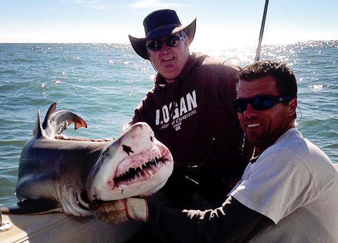 Shark Fishing Port Canaveral