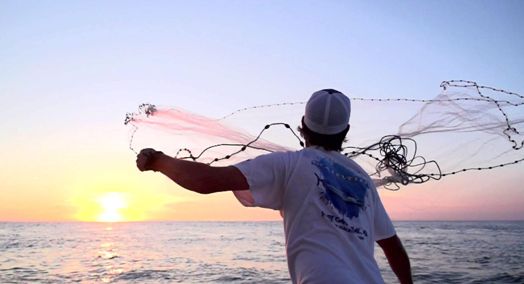 Shark fishing near cocoa beach for Cocoa beach fishing