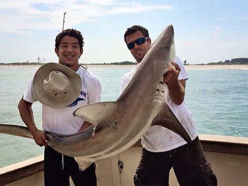 Shark Fishing near Daytona Beach