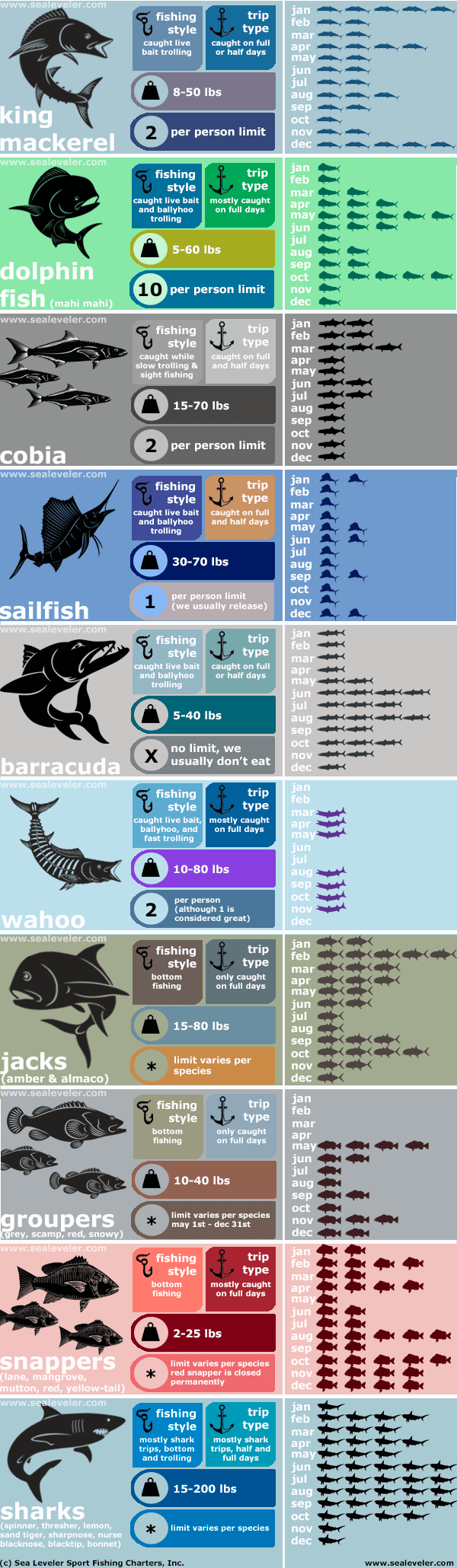 fish caught by month infographic